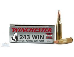 Winchester .243 80GR