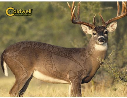 "Caldwell The Natural Series 48"" x 36"" Big Buck Rectangle Whitetail Deer Target - 234412"