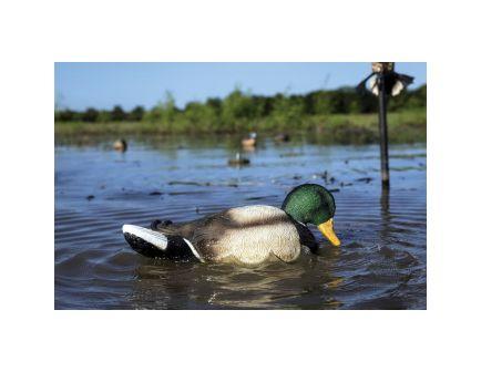 Mojo Outdoors Rippler Decoy, Duck - HW2443