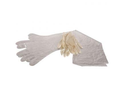 Allen Field Dressing Gloves, Clear, 6/pack - 516