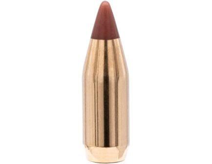 Hornady NTX .17 15.5 gr Ballistic Tip Varmint Rifle Bullet, 100/box - 17016