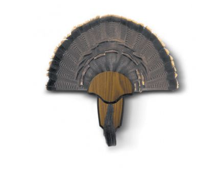 Hunter's Specialties Wild Turkey Tail and Beard Mounting Kit, Brown - HS-STR-00849