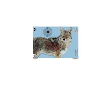 """Birchwood Casey Pregame 16.5""""x24"""" Coyote Target w/ Visible Vitals, 3 Pack - BC-35405"""