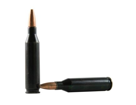 Traditions .243 Winchester Rifle Training Cartridges ATR243WIN