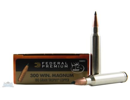 .300 Winchester Mag Ammo