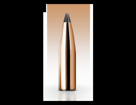 Nosler 30 Caliber (.308) 180gr Protected Point Bullets 50ct - 25396