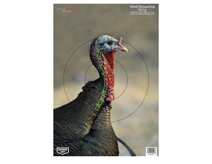 "Birchwood Casey PREGAME Turkey 12""x18"" 8 Pack Targets 35403"