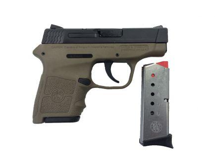 Smith & Wesson Bodyguard .380 Pistol w/o Laser, FDE - 10167