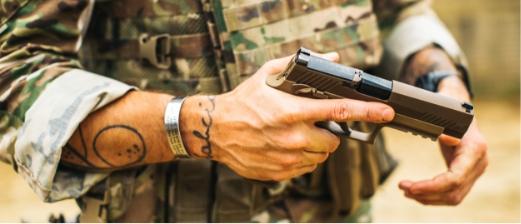 Sig Sauer Firearms | Palmetto State Armory